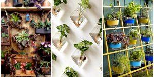 19 чудесных вертикальных садов, которые каждый может сделать на даче или в квартире при минимуме места